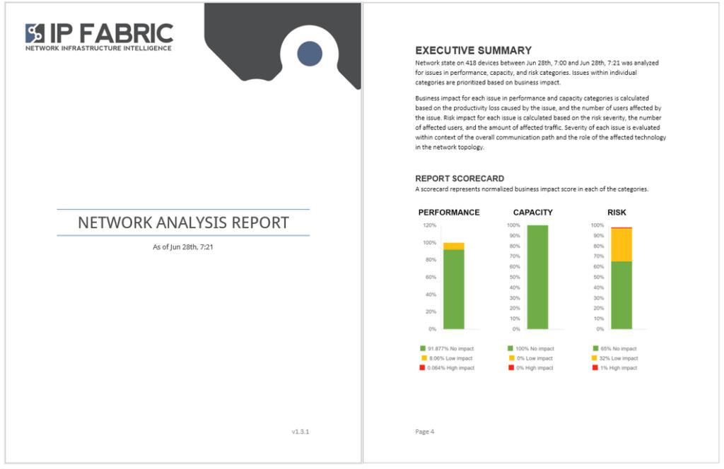 IP fabric - Network Analysis report